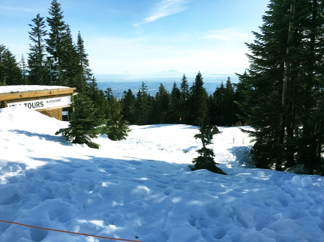 foto 4 Grouse Mountain (1).2.jpg